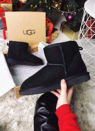 Ugg classic mini black натуральные женские зимние сапоги угги чёрные зима овчина