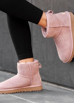 Ugg classic mini pink натуральные женские зимние сапоги угги розовые зима овчина