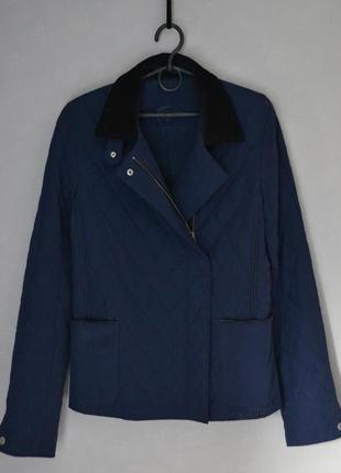 Стеганая синяя куртка косуха lacoste