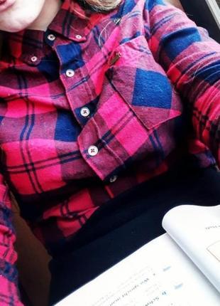 Красно-синяя рубашка в клетку