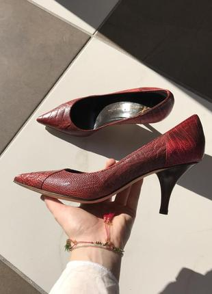 Оригинал! новые, итальянские туфли лодочки под змеиную кожу giuseppe zanotti