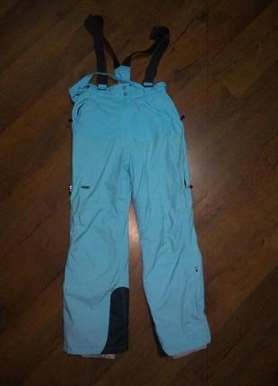 Зимние,горнолыжные термо штаны