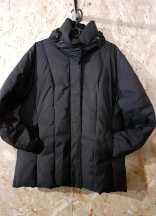 Зимова куртка (пуховик) steinebronn