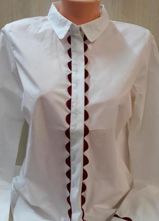 Шикарна стильна блуза
