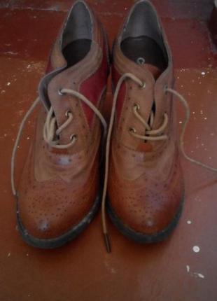 Стильные ботильоны на шнуровке