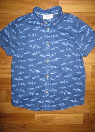 Стильная легкая рубашка h&m на 7-8 лет