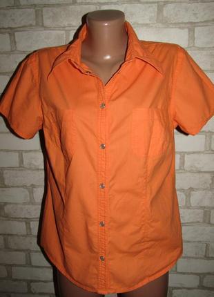 Яркая красивая рубашка р-р 14 бренд explorer