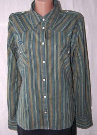 Рубашка в стиле милитари, военная тематика, полоска, погоны, на кнопках,100% хлопок