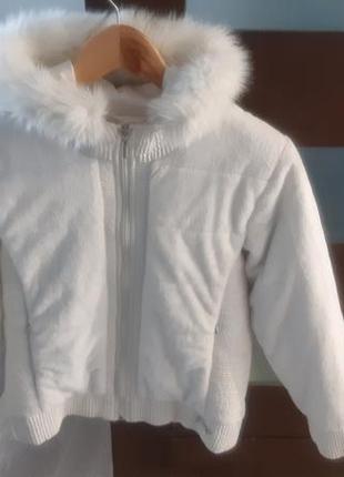 Куртка холодна осінь/весна