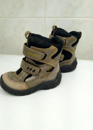 Черевики ботинки ecco gore tex