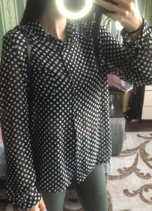 Прозрачная блузка в актуальный горох😻