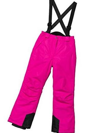 Лыжные штаны crane