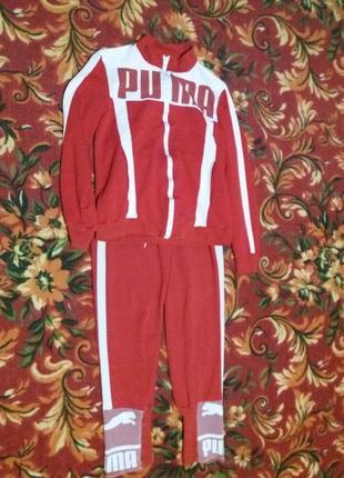 Красный спортивный костюм  puma