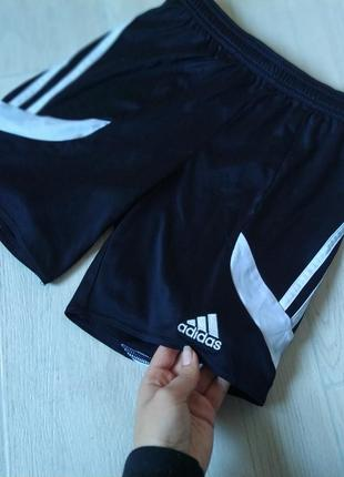 Спортивные шорты от adidas