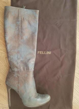 Чобітки fellini