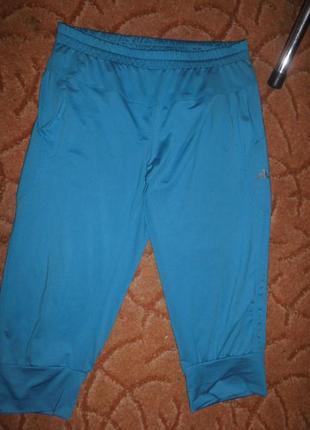 Бриджи adidas xxxl голубого цвета 50-54 р