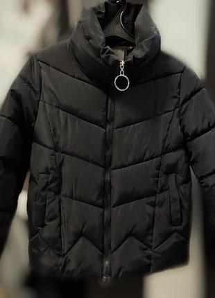 Куртка осень-весна