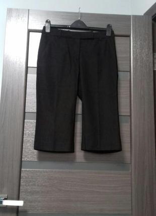 Бриджи капри длинные шорты офисные  размер 36
