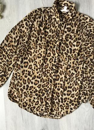 Фирменная рубашка h&m, размер 36