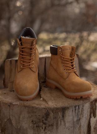 Оригинальные зимние ботинки. timberland 6-inch. wheat  темно жёлтые меховые. 28 цветов