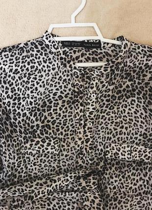 Хлопковая блузка рубашечного типа в animal print zara basic turkey