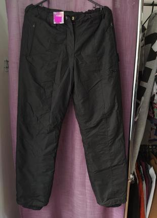 Спортивные лыжные штаны thinsulate