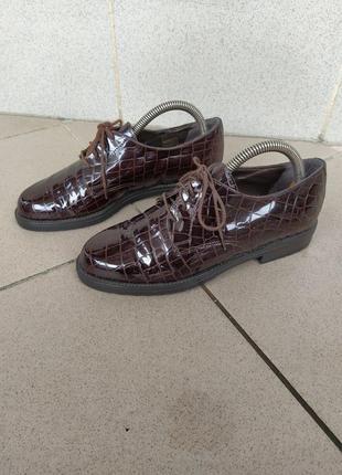 Туфли roberto santi