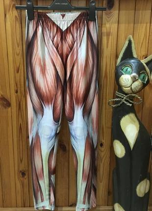 Анатомические спортивные лосины