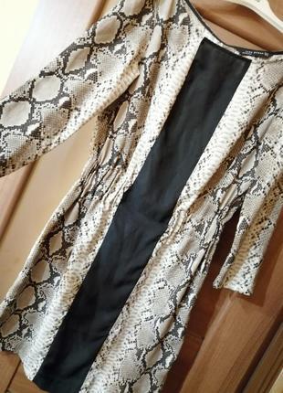 Платье zara, принт xs, s