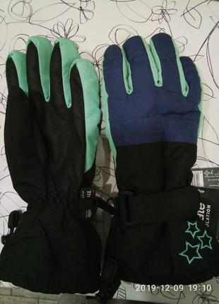 Перчатки зимние лижные