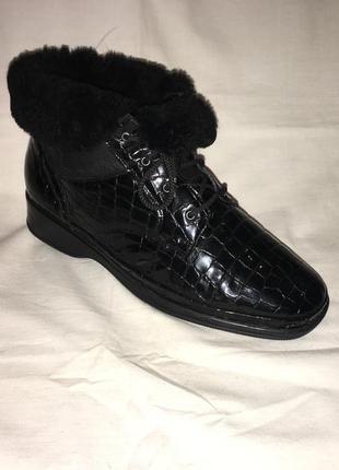 Ботинки утеплены *waldaufer* кожа+ натуральій мех германия р.40( 26.00 см)