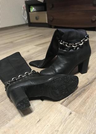 Сапоги чобітки ботфорди фірмові chester шкіряні