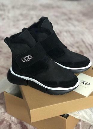 Ugg dakota  стильные зиние ботинки