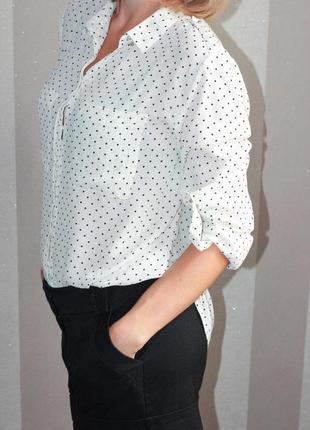 Блузка в горошек h&m