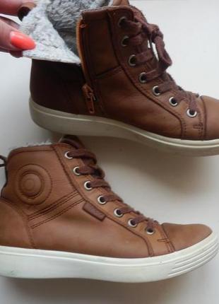 Зимние ботинки ecco 34р
