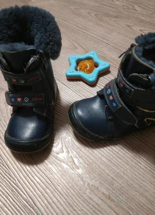Зимние ботинки сапоги сапожки