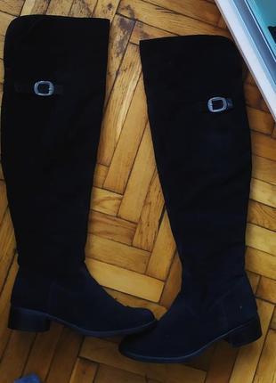 Сапоги демисезонные tamaris, hotter, gabor, ботфорты,чоботи демі