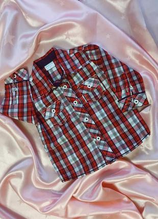 Рубашка в клетку babybaby