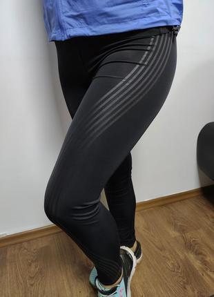 Лосины workout