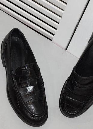 Кожаные  туфли alberto fabiani