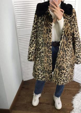 Розкішна леопардова шубка з контрастним воротніком