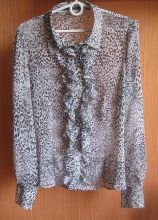 Блузка рубашка шифоновая