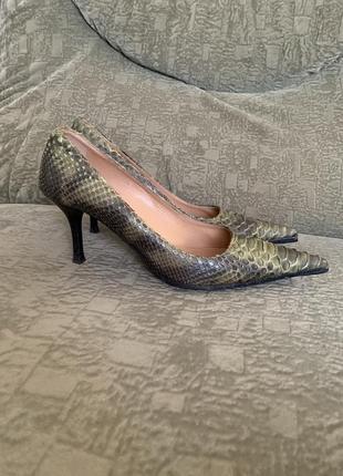 Туфли из кожи змеи