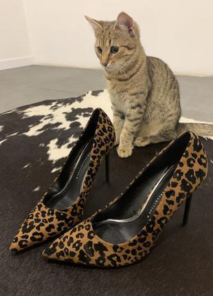 Туфли zara леопард