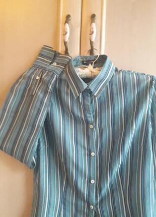 Женская рубашка massimo dutti