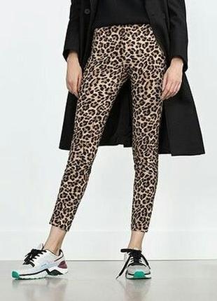 Супер стильные трендовые брюки фирмы esmara by нeidi кlum