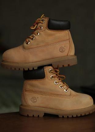 Детские ботинки timberland toddler's 6-inch premium waterproof wheat nubuck boots 12809