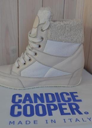 Новые ботинки - сникерсы candice cooper 37-37,5p