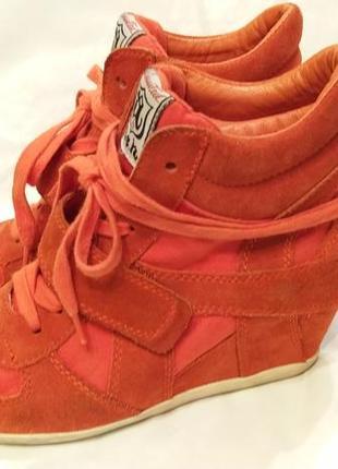 Яркие оранжевые замшевые сникерсы маранты на скрытой платформе ash