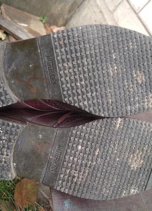 Туфли мужские  дерби sioux р.97 фото